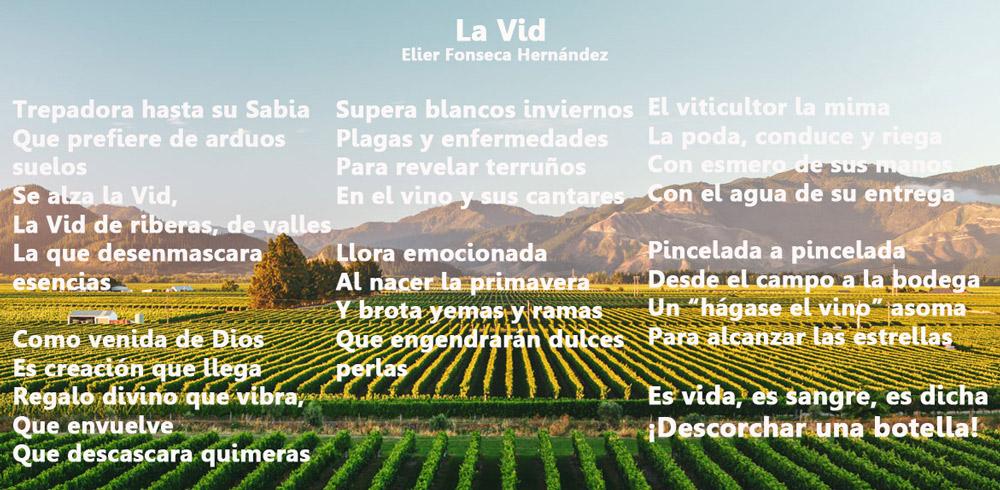 Poesía sobre vinos. La Vid